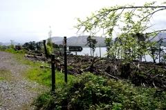 Kenmare River