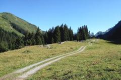 Stubenbach