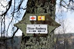 Titisee Rundweg