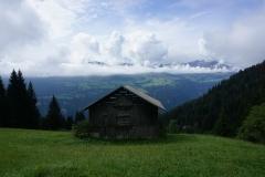 Alp Darpagaus