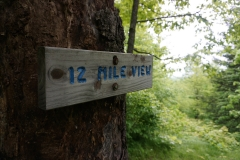 12-Mile Viev