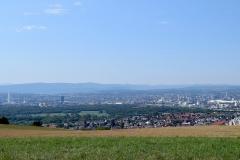 Tüllinger Berg